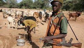 Armed Herdsmen